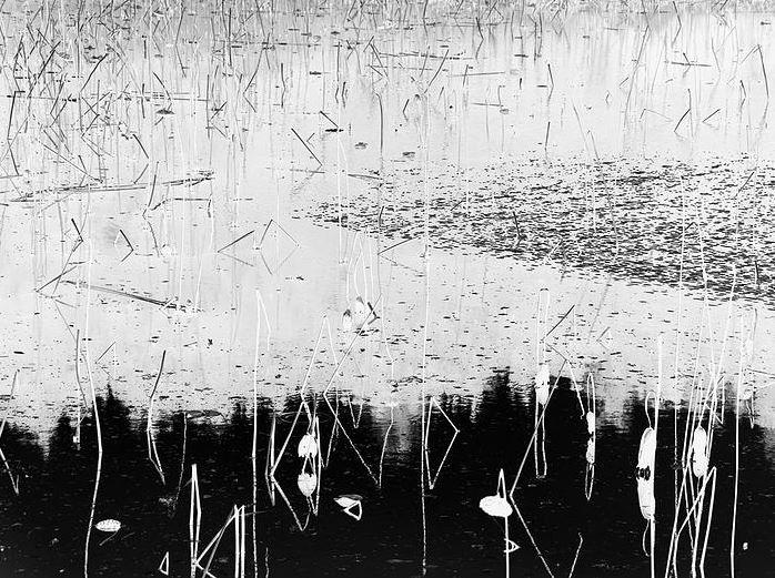 Koyama Toshitaka, photographie noir et blanc, courtesy de l'artiste.